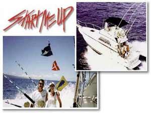 Start me up sportfishing tours maui hawaii discount for Start me up fishing