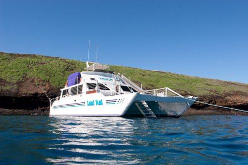 Lani Kai Maui boat at Coral Gardens Maui