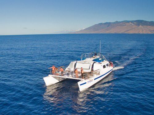 Molokini snorkeling tour on Malolo