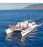Turtle Town and Molokini Snorkeling aboard Malolo