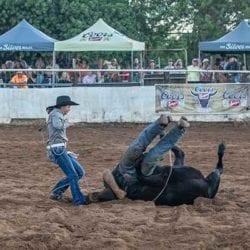Makawao Rodeo Roping