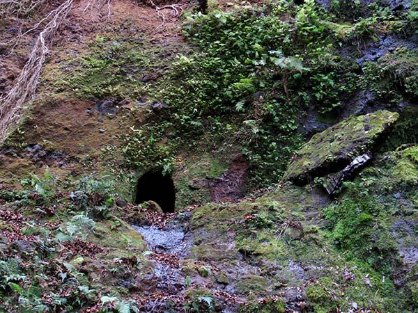 Hiking_On_Maui_Spring
