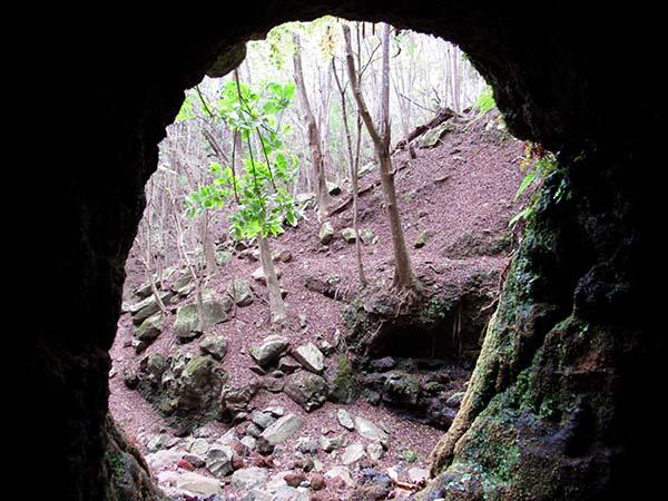 Hiking_On_Maui_Tunnel