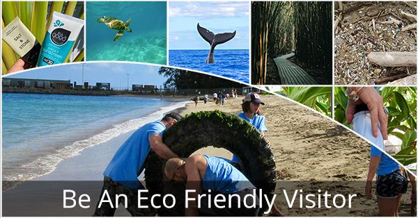Eco_Friendly_Visitor_Blog
