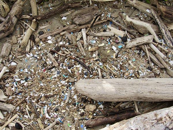 Eco_Friendly_Visitor_Microplastics
